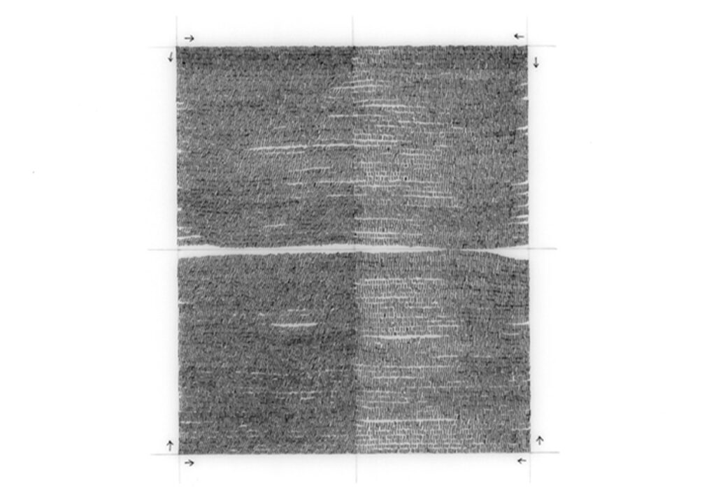 aline-helmcke-2012-systemic-drawing-04