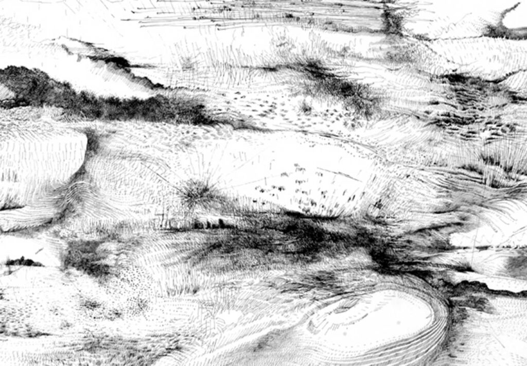 aline-helmcke-drawing-motion-landscape-1