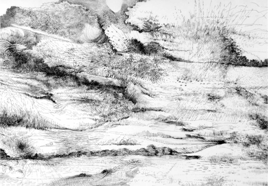 aline-helmcke-drawing-motion-landscape-2